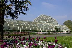 picture of the greenhouse in Kew Gardens